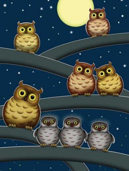 Owls - 300 piece SunsOut puzzle