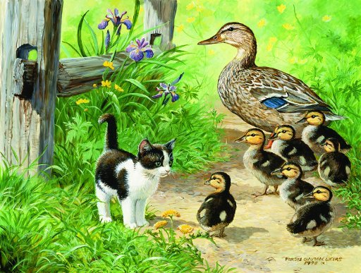Duck Inspector - 500 piece SunsOut puzzle - for Ages 12+