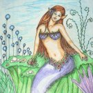 Color Pencil Drawing Original Art 9inx12in (22.9cmx30.5cm) Title Sea life