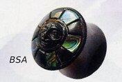 Abalone Skull Plug