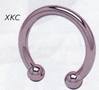 Titanium Caviar Circular Barbells