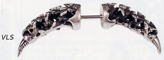 Vertebrae Link Septum Spike
