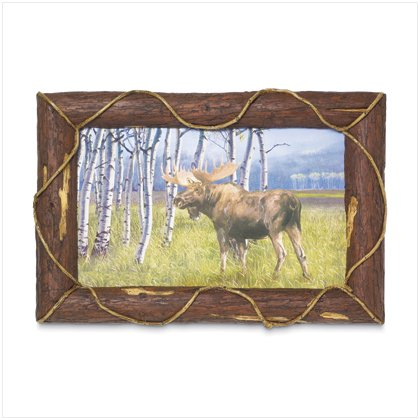 Moose Frame Art
