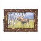 Moose Frame Art