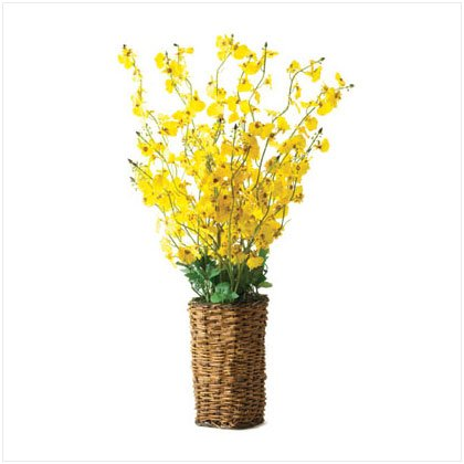 Yellow Orchid Arrangement with Rattan Basket