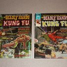 DEADLY HANDS OF KUNG FU MAGAZINE COMIC 1-33 BRUCE LEE