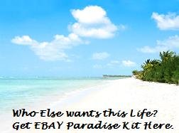 Ebay Paradise Success Kit