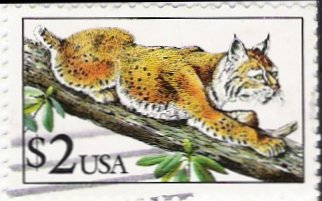 US Scott  2482 - $2.00 - Bobcat - Used VF
