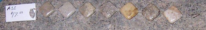 A12 - Bracelet - Fossilized Bead Bracelet