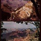 GRAND CANYON National Park, ARIZONA Postcards (2) - Mule Train