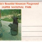 1950s JASPER NATIONAL PARK (Canada) - Full Color Souvenir Folder/Mailer