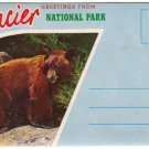 1950s GLACIER NATIONAL PARK, Montana - Full Color Souvenir Folder/Mailer