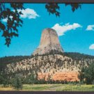 1950s DEVIL'S TOWER - Wyoming - Unused Full-Color Postcard