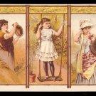 1882 COWPERTHWAITS HOME FURNISHERS (New York/Brooklyn) - Victorian Trade Card