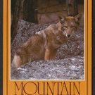 1980s SIERRA NEVADA MOUNTAINS, CALIFORNIA - Mountain Coyote - Unused Postcard