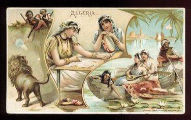 1893 Victorian Trade Card - Arbuckle Brothers Coffee Company - ALGERIA (#41)
