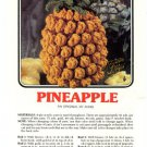 Annie's Attic Luscious Fruit Potholders Pineapple Crochet Pattern 345