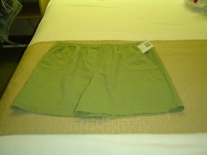 sz 1X Plus Size Green Shorts