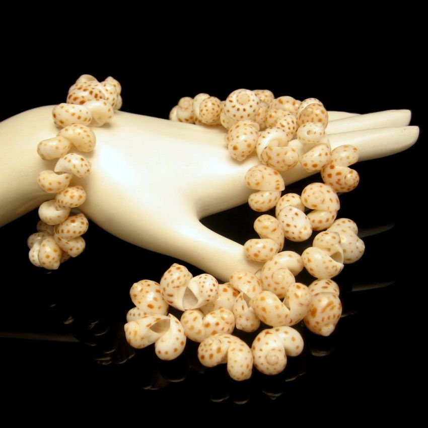 Vintage Large Sea Shells Necklace Bracelet Set Beautiful Polished Vacation Beach