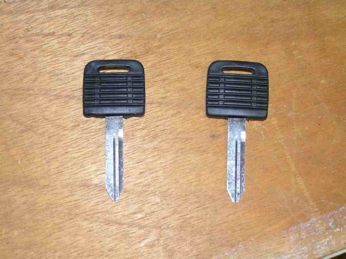 2 FREIGHTLINER FACTORY HEAVY TRUCK TRACTOR RUBBER HEAD KEY BLANK BLANKS