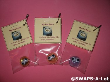 Mini My Pet Rock Girl Scout SWAPS Kids Craft Kit makes 25