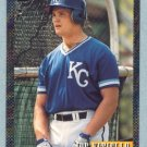 1993 Bowman # 367 Joe Vitiello Foil Royals
