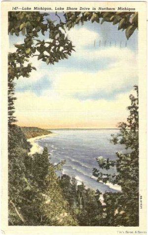 Lake Michigan Lake Shore Drive in Northern 147 Postcard