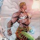 Aquaman (2003) #12 DC Comics VF