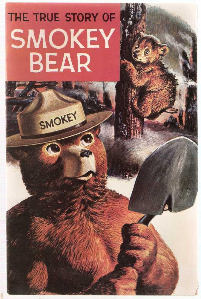 True Story of Smokey Bear 1969 Dell Comics GD/VG A