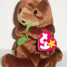 TY Beanie Babies Seaweed the Otter w/ Swing Tag 2002 Loose Used