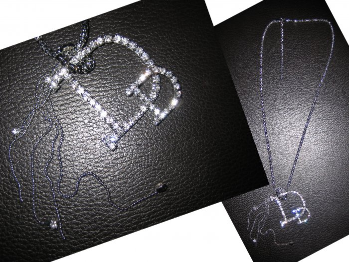 Long  Interlocking Ring Multi Charm Lariat Letter D Crystal Pendant Necklace-Silver (FREE Shipping)