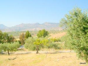 SICILIAN FARM HOLIDAY