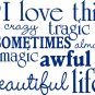I love this crazy life Decal Sticker Wall Graphic Art Quote Love Wedding boy girl teen room modern