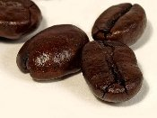 DECAF Costa Rican Reserve, ground