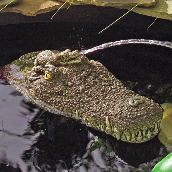 Floating Gator Pond Fountains