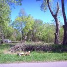  Acre Lot For Sale in Black Oak Indiana