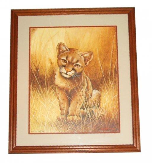 "Jim Oliver wildlife print ""Cougar Cub"""