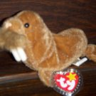 1999 Paul Baby Brown Walrus Ty Beanie Baby with Tag Protector MWMT 5-1-99 Retired 12-23-99 New