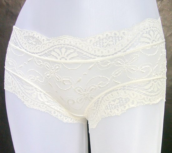 White sheer lace nylon briefs panties lingerie *Free shipping*