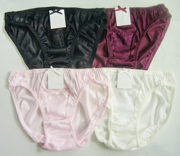 4 Pair Sexy Sheer Nylon Bikini Panties S- M