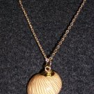 Gold Trimmed Shell Necklace W / Chain