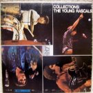 Collections  - The Young Rascals