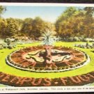 Floral Clock, Montreal, Canada Postcard - Unused