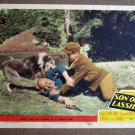 CH42 Son Of Lassie PETER LAWFORD and LADDIE 1945 original lobby card