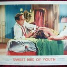 AF46 SWEET BIRD OF YOUTH Paul Newman orig '62 LC