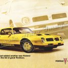 "1976 Pontiac Firebird Ad Digitized & Re-mastered Poster Print ""Another New Firebird"" 16"" x 24"""