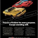 "1978 Pontiac Firebird Ad Digitized & Re-mastered Poster Print ""Firebird for Every Purpose"" 24"" x 36"""