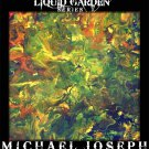 ORIGINAL MODERN ABSTRACT ART PAINTING by MICHAEL JOSEPH