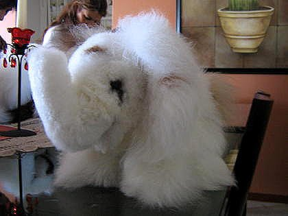 Elephant,handmade of Alpaca fur, soft toy
