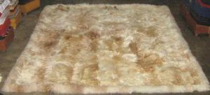 Soft baby alpaca fur with light beige and white spots, 300 x 200 cm